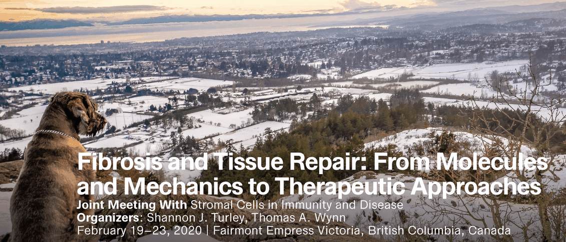 Fibrosis and Tissue Repair: From Molecules and Mechanics to Therapeutic Approaches – February 19-23, 2020 | Victoria, BC, Canada